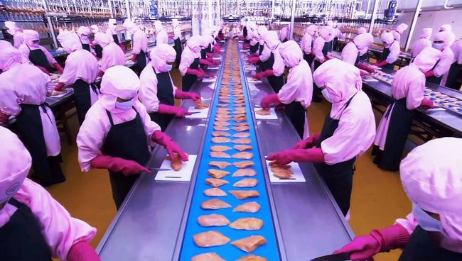 Các doanh nghiệp tại Bà Rịa - Vũng Tàu đang 'khát' nguồn lao động - Ảnh 1.