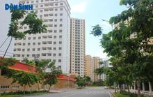 TP.HCM: Chuyển giao công tác quản lý và vận hành dự án nhà ở, đất ở thuộc sở hữu của nhà nước