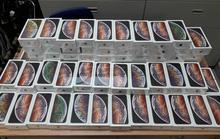 Tạm giữ hơn 250 Iphone tại sân bay quốc tế Tân Sơn Nhất