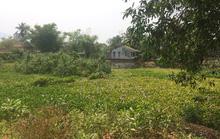 Vụ hàng chục lô đất bị cấp trái thẩm quyền tại Huế: Sẽ đảm bảo quyền lợi cho người dân