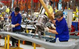 Năm 2019: Lao động, việc làm chuyển biến tích cực, số người có việc làm tăng
